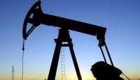 Brent petrol 50 dolara geriledi