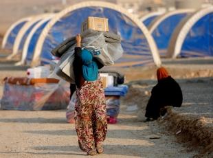 Musuldan kaçanlar kamplara yerleştiriliyor