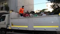 Yalnız yaşayan kadının evinden 3 kamyon çöp çıktı