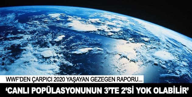 2020de canlı popülasyonunun 3te 2si yok olabilir