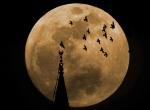En büyük Süper Ay yarın