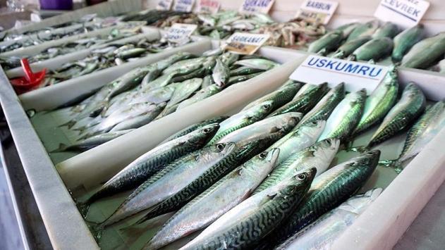 Soğuk hava balık fiyatlarını üçe katladı