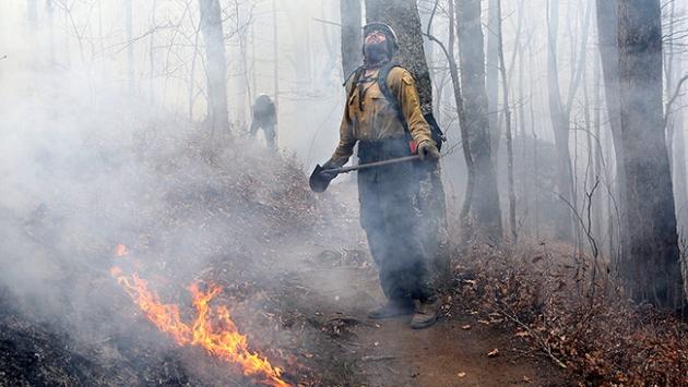 ABDdeki orman yangınında ölü sayısı 11e yükseldi