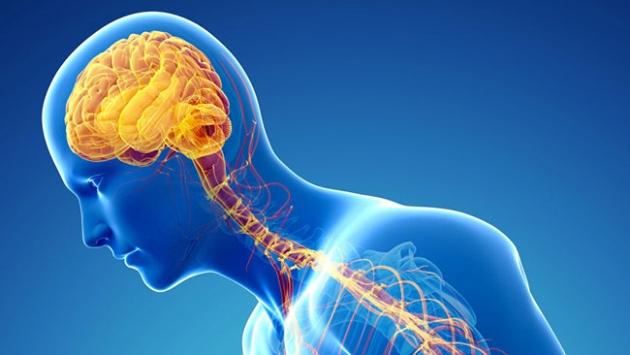 Parkinson tedavisinde ümit verici gelişme