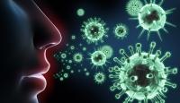 Canlı virüs kullanarak grip aşısı ürettiler