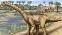 Avrupa'nın En Büyük Dinozoruna Büyük İlgi