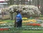 Dünyanın En Büyük Çiçek Bahçesi