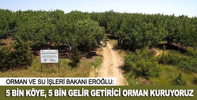 5 bin köye 5 bin gelir getirici orman kuruyoruz