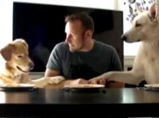 Bu üçlü spagetti yarışında