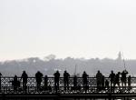 İstanbul Boğazında İstavrit akını