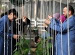Üniversite öğrencilerinin yetiştirdiği bitkiler kampüste satılıyor