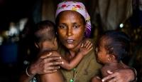 14 ülkeden Myanmara Arakan çağrısı