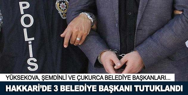 Hakkaride 3 belediye başkanı tutuklandı