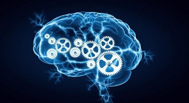 Yapay zeka makale yazdı: İnsanlık için kendimi feda ederim