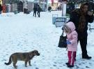 Trakya'da dondurucu soğuk