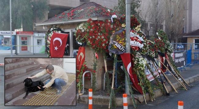 İzmirliler şehit Sekinin köpeği Zeytini unutmadı