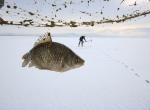 """Beyşehir Gölünde """"Eskimo usulü"""" balık avı"""