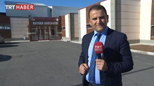 Erzurumda hayvanlar için hastane