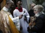 İspanyada evcil hayvanlar kutsandı