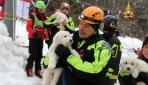 İtalyada 3 yavru köpek çığ altından kurtarıldı