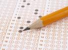Seviye Tespit Sınavı sonuçları açıklandı