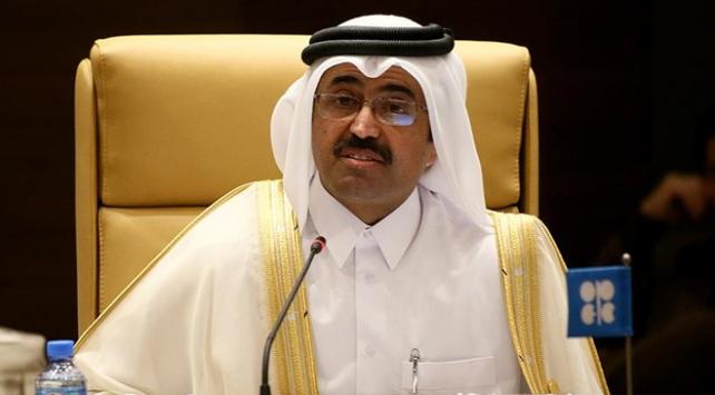 Türkiye isterse Katar LNG göndermeye hazır