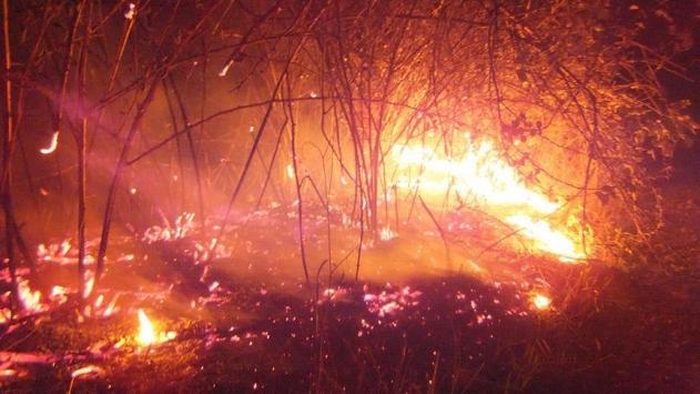 Göksu Deltasındaki yangın söndü