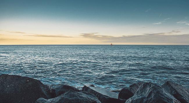 Okyanuslardaki oksijen seviyelerinde düşüş