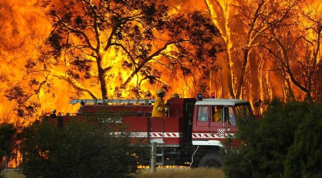 Avustralya alev alev yanıyor