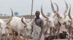 Güney Sudandaki Mundari Kabilesi