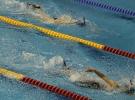 Paletli yüzmede 16 Türkiye rekoru
