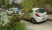 İşte Ankara'daki Fırtınanın Bilançosu