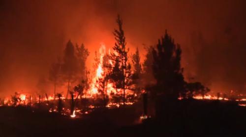 Şilinin başı orman yangınlarıyla dertte