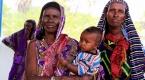 Kenyada yaşam kuraklık tehdidi altında