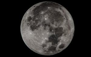 Ayın etrafında tur atacaklar