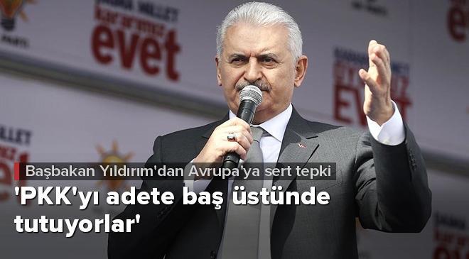 PKKyı adete baş üstünde tutuyorlar