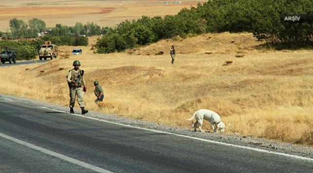 Teröristlerin araziye tuzakladığı patlayıcı imha edildi