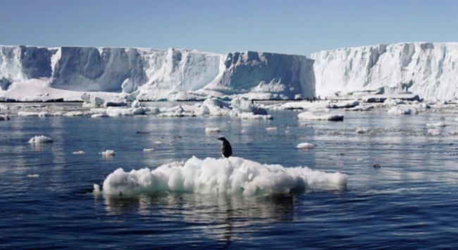 Amerikada küresel ısınmayla ilgili araştırma