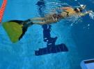 Türkiye Yüzme Federasyonu, iki adayla seçime gidecek