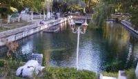 1800 Yıllık Havuzda Yüzme Yarışması