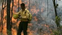 ABD'de Yangınlar Korkuttu
