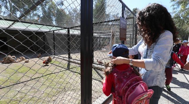 Otizmli çocuklar hayvanlarla tanıştı