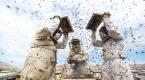 Gazzede bal hasadı