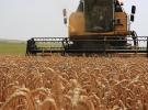 Rusya ile tarım ürünlerinde anlaşma yakın