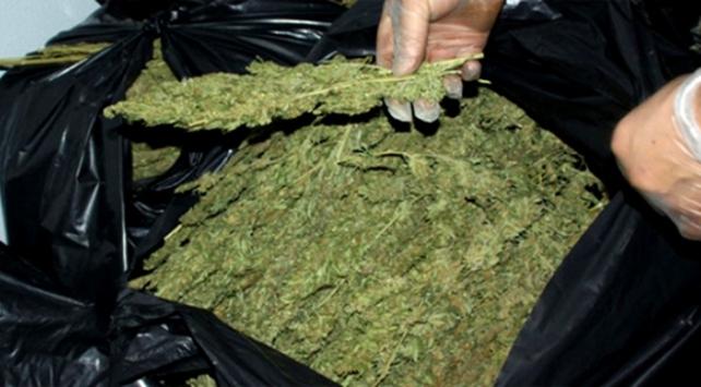 21 Kg Uyuşturucu Yakalandı