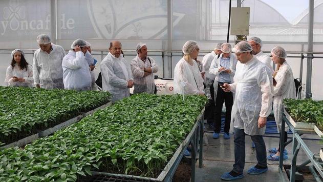 Rus tarım heyeti Mersinde incelemelerde bulunuyor