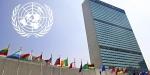BMden Kuzey Koreye kınama