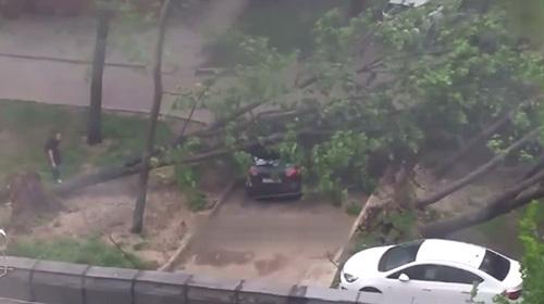 Rusya'da fırtına 16 cana mal oldu