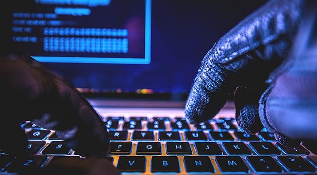 Çaldıkları kişisel bilgilerle sahte e-Devlet sistemi kurdular