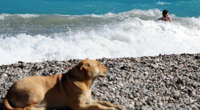 Antalyada vatandaşlar sahil ve parklara akın etti